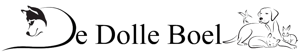 Het-LOGO-de-dolle-boel_small